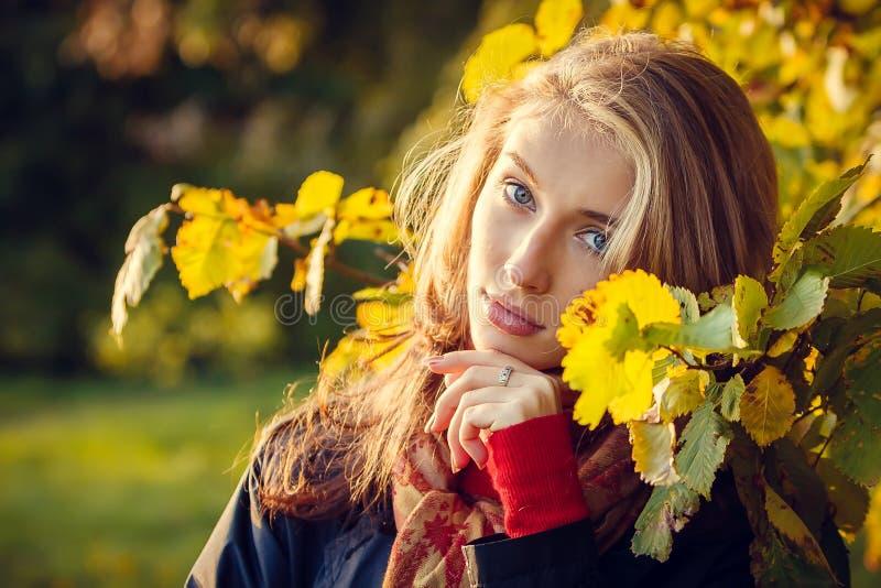 Menina bonita do outono fotografia de stock