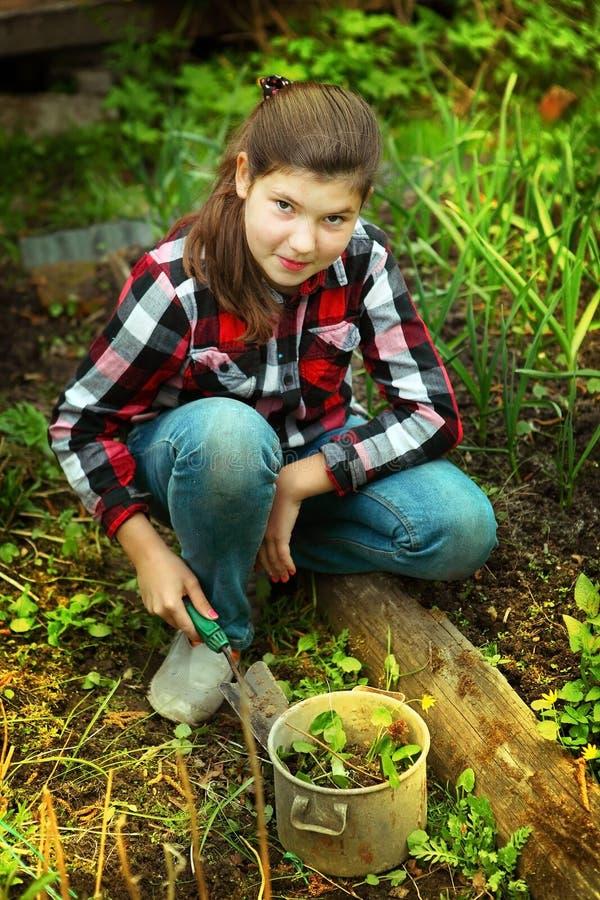 A menina bonita do Preteen cultiva brotos no mercado-jardim da mola imagens de stock