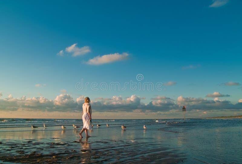 Menina bonita e as gaivotas imagem de stock