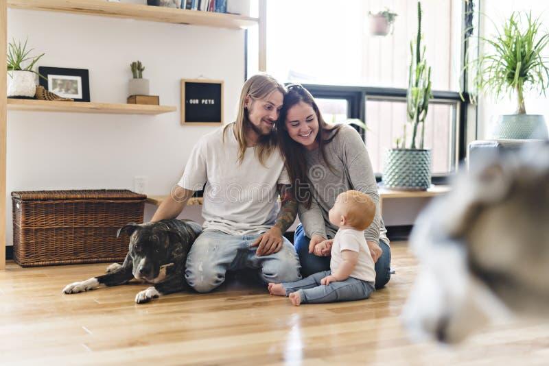 Menina bonita e seu pai que obtêm algum amor de cachorrinho na sala de visitas fotos de stock