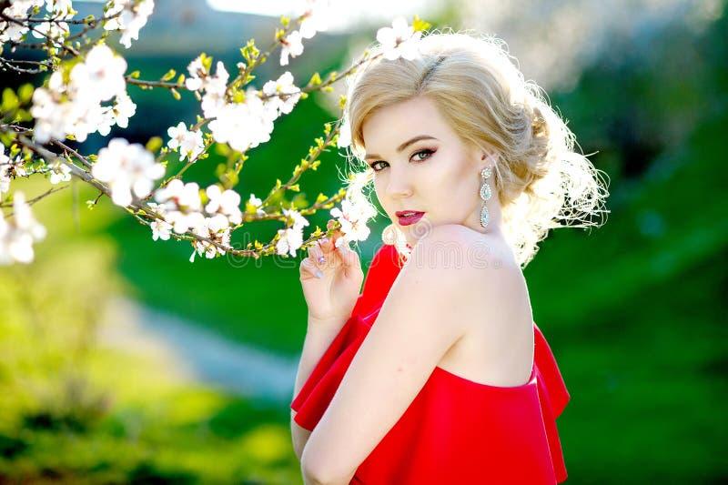 Menina bonita em um vestido vermelho no jardim da mola entre os ramos de florescência da cereja, cobertos com as flores, calor fotos de stock royalty free