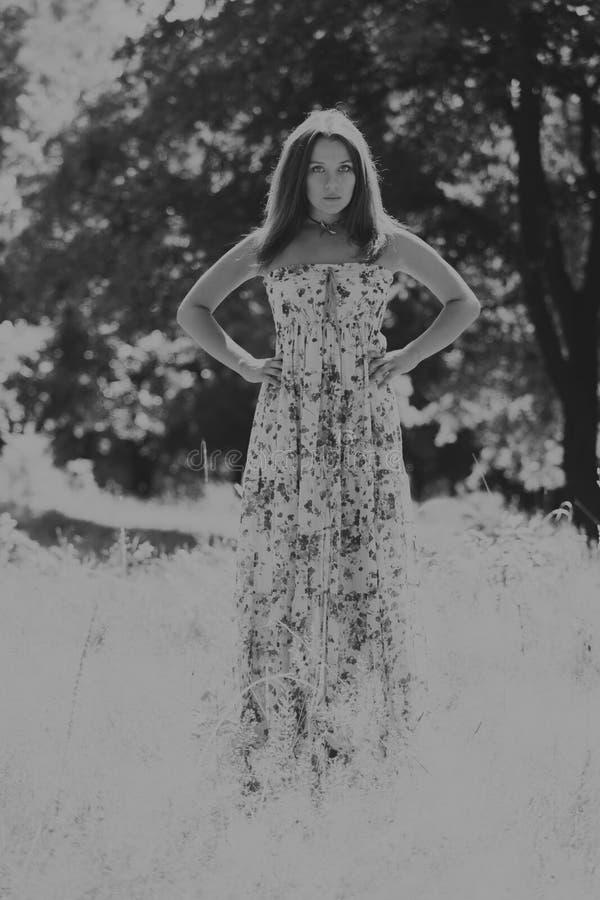 Menina bonita entre campos de flor fotos de stock royalty free