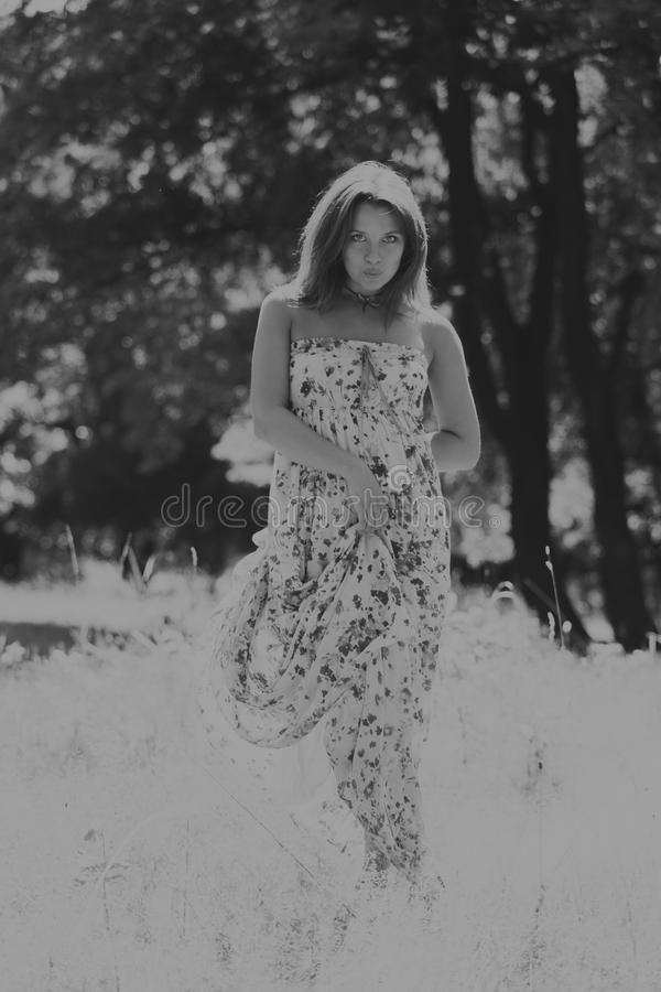 Menina bonita entre campos de flor imagem de stock royalty free