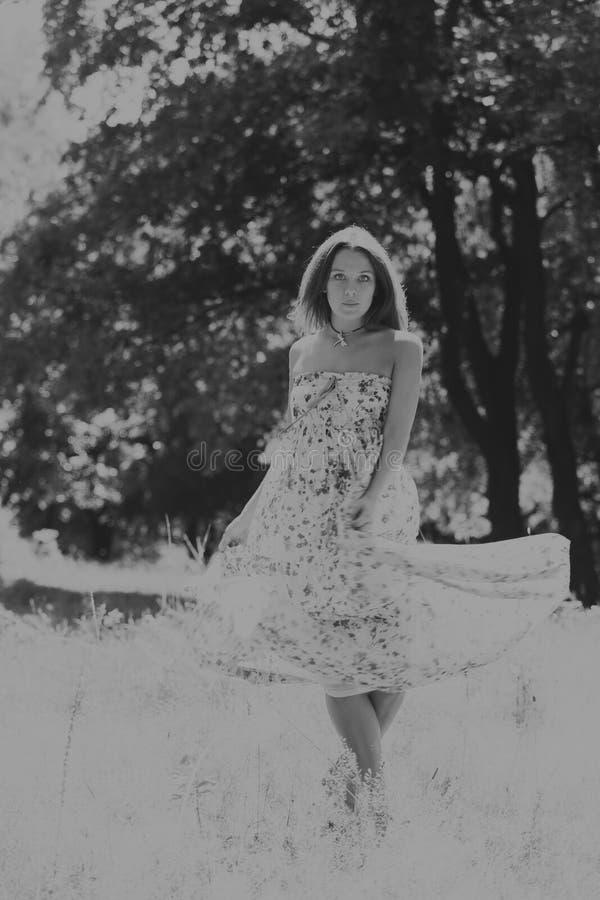 Menina bonita entre campos de flor foto de stock