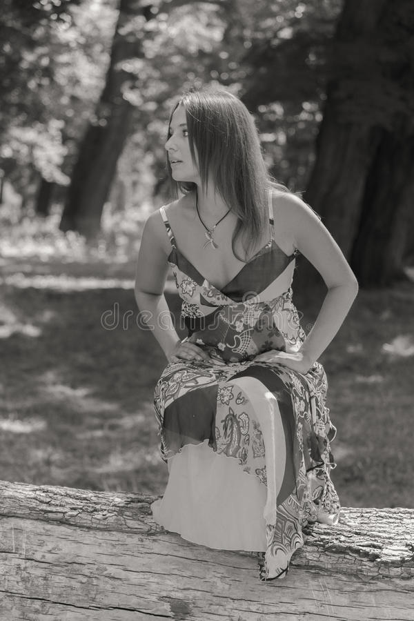 Menina bonita entre campos de flor fotografia de stock royalty free