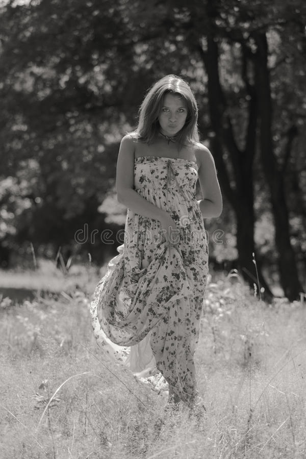 Menina bonita entre campos de flor fotografia de stock