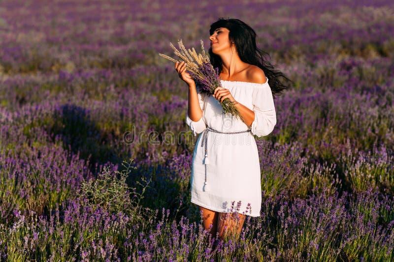 A menina bonita está entre os campos da alfazema Menina bonita no por do sol A menina no campo de flor Mulher que anda na alfazem fotografia de stock royalty free
