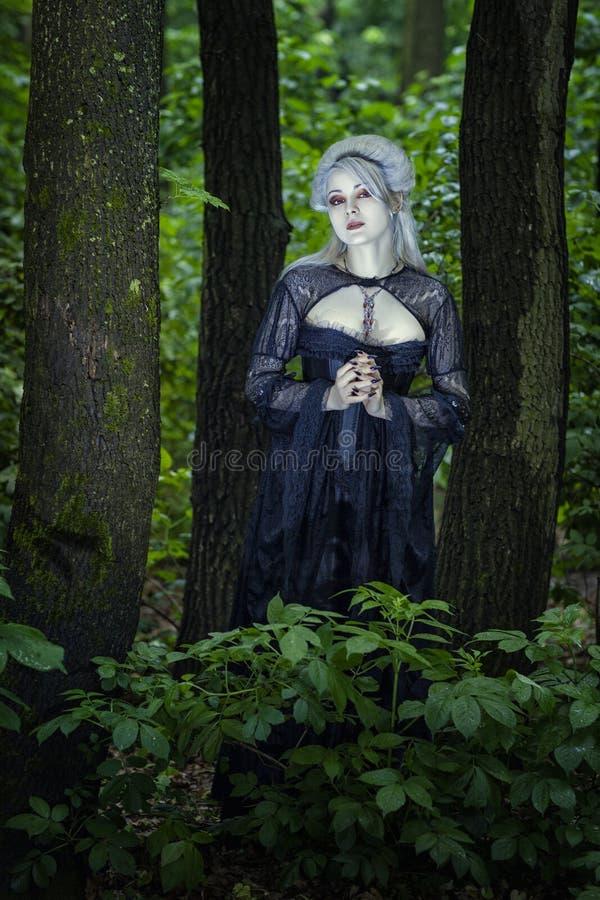 Menina bonita moldada nas madeiras fotos de stock royalty free