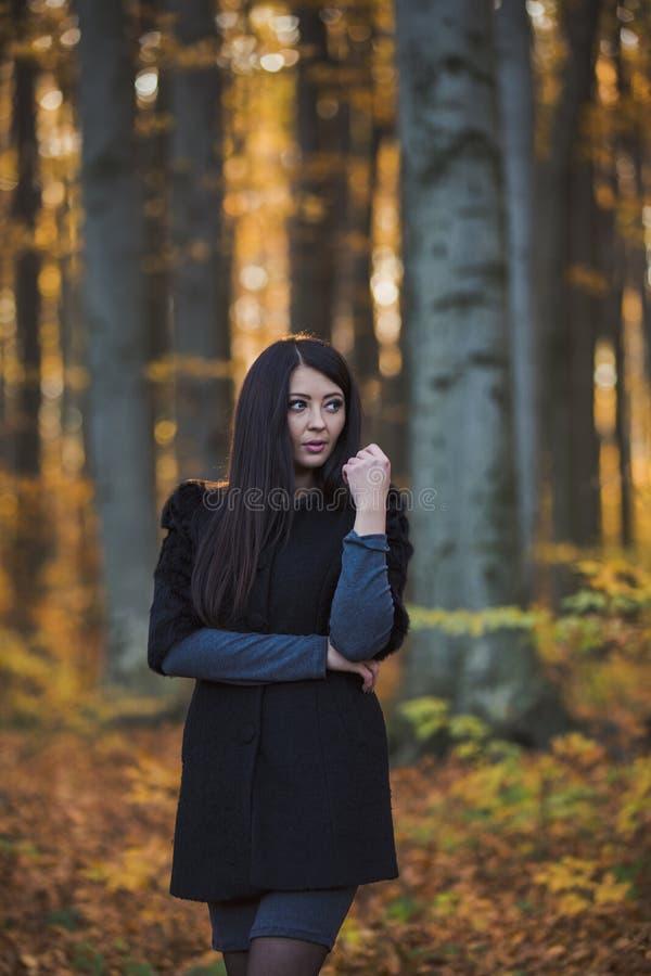 Menina bonita na floresta fotos de stock