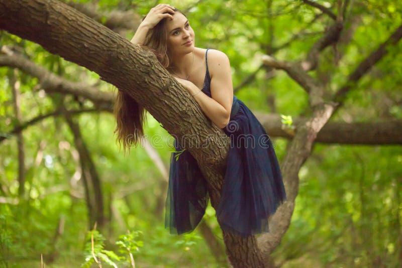 menina bonita no brunett da floresta em um tronco de árvore em um vestido azul Com cabelo longo fotos de stock royalty free