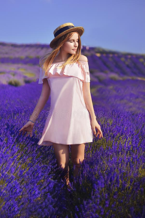 Menina bonita no campo da alfazema Mulher bonita no campo da alfazema no por do sol Foco macio Provence, France Uma menina no pin fotos de stock