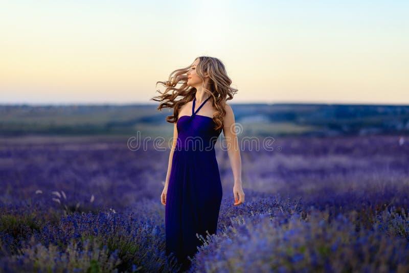 Menina bonita no campo da alfazema Mulher bonita no campo da alfazema no por do sol foto de stock royalty free