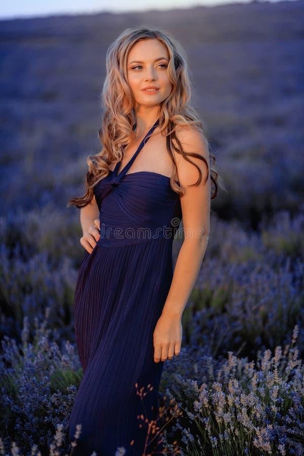 Menina bonita no campo da alfazema Mulher bonita no campo da alfazema no por do sol fotos de stock