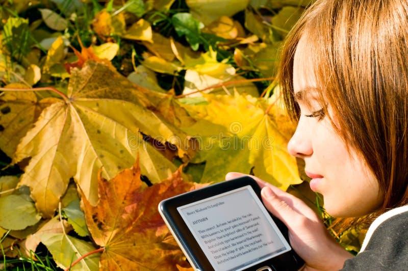Menina bonita no parque do outono imagem de stock royalty free