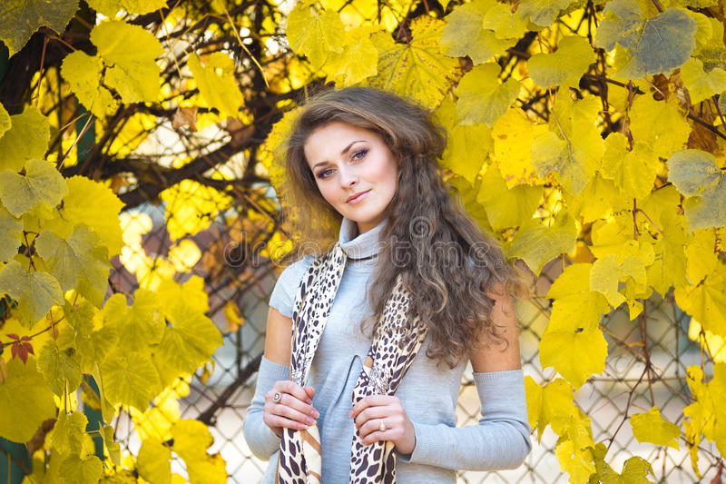 Menina bonita no parque do outono foto de stock royalty free