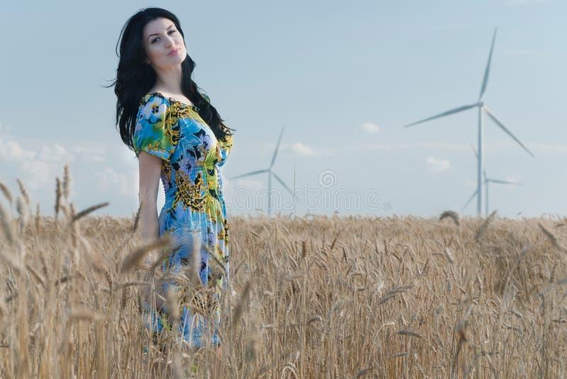 Menina bonita no Rye fotos de stock royalty free