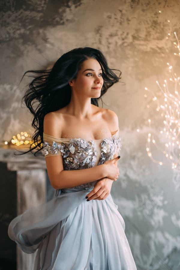 Menina bonita no vestido cinzento imagem de stock