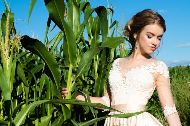 Menina bonita no vestido luxuoso com composição com milho no campo fotografia de stock royalty free