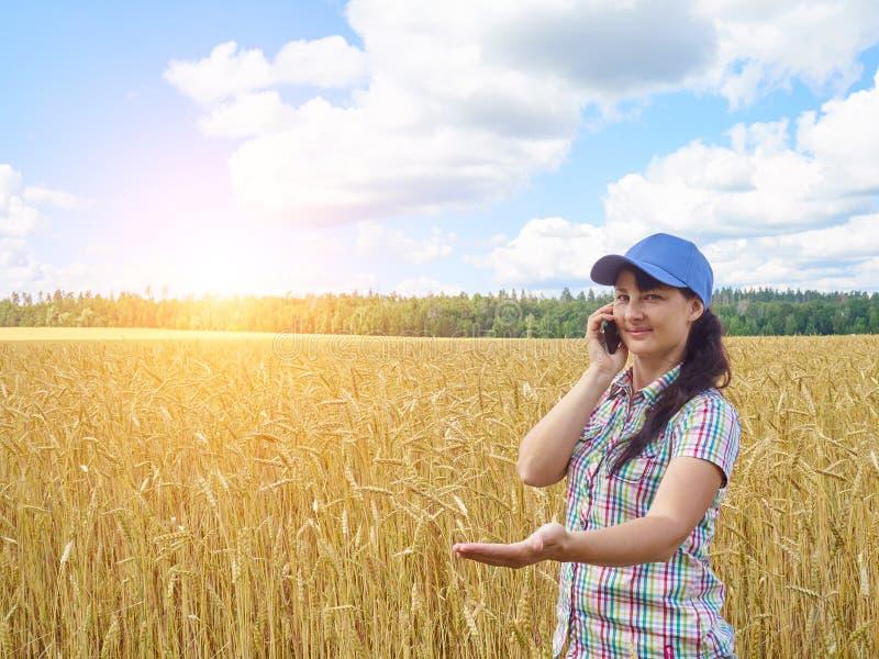 Menina bonita nova do fazendeiro que está no campo e na conversa amarelos de trigo imagem de stock