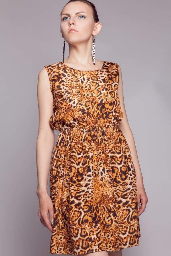 Menina bonita nova no vestido do leopardo imagens de stock