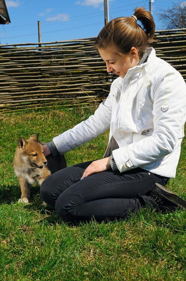 A menina bonita nova pets um filhote de cachorro foto de stock