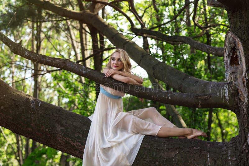 Menina bonita nova que senta-se em uma árvore grande no parque do verão imagem de stock