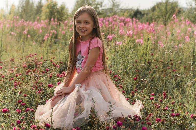 menina bonita pequena que senta-se em um campo do trevo no por do sol durante férias de verão imagem de stock