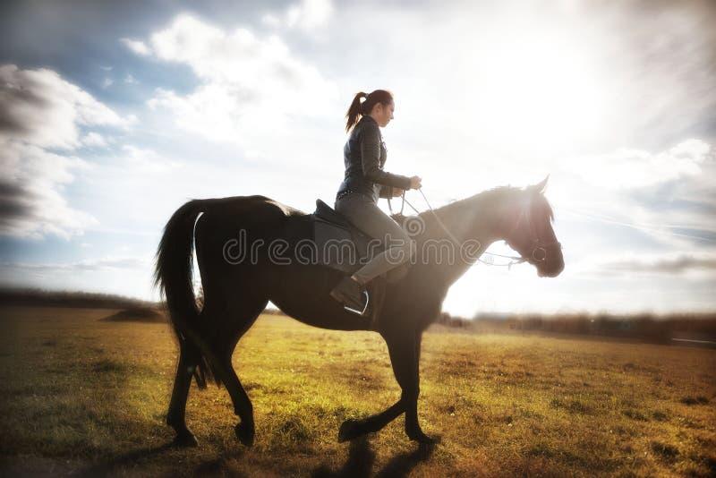 Menina bonita que monta um cavalo preto em um dia ensolarado Esporte equestre fotografia de stock royalty free