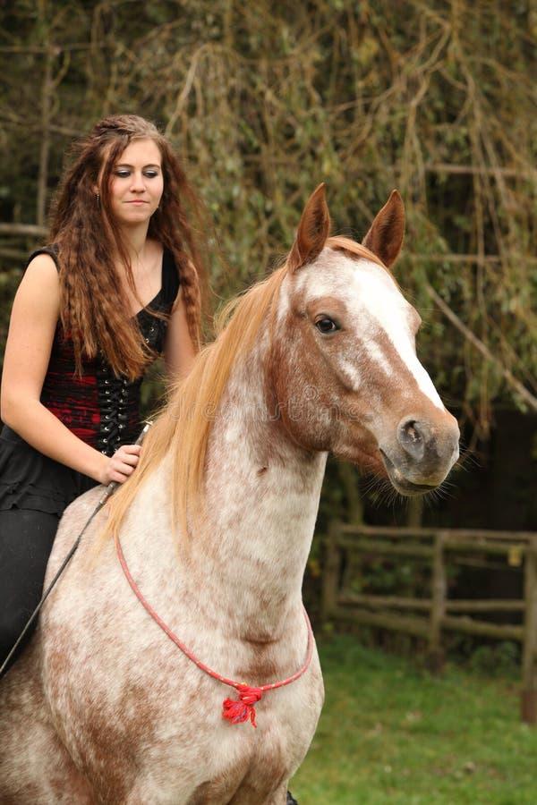 Menina bonita que monta um cavalo sem algum equipamento fotos de stock