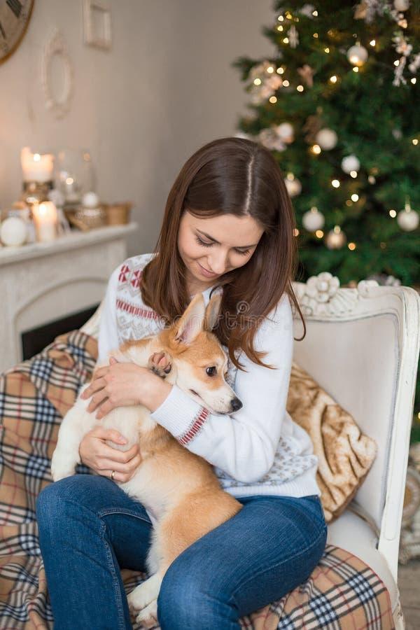 Menina bonita que senta-se no sofá com um casaco de lã do Corgi de Galês do cachorrinho fotos de stock