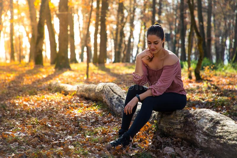 Menina bonita que situa em um tronco com folha alaranjada e luz solar dourada imagens de stock royalty free