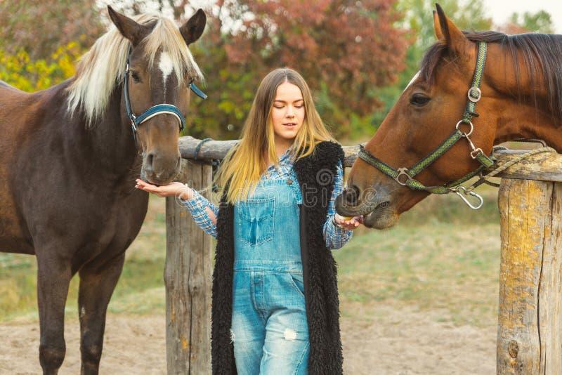 Menina bonita que toma de seus cavalos Foco na menina Tom morno da imagem Foco macio imagens de stock
