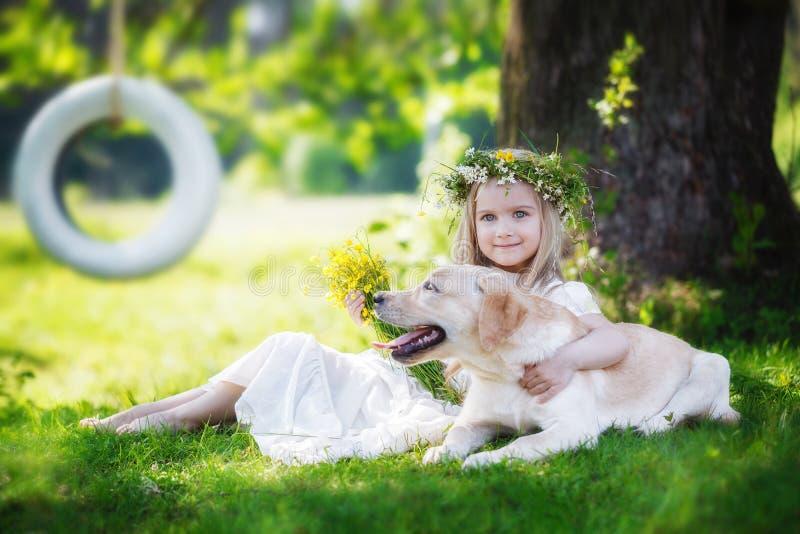 A menina bonito abraça um cão grande no parque do verão imagem de stock