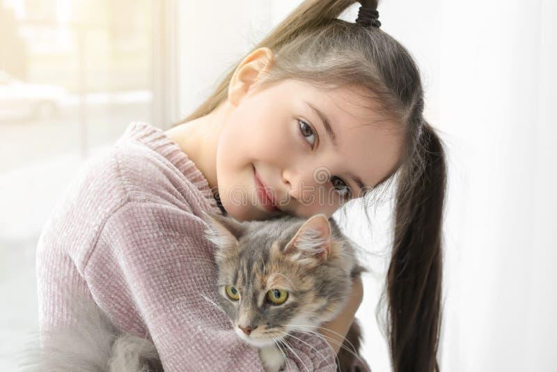Menina bonito com o gato perto da janela imagem de stock royalty free