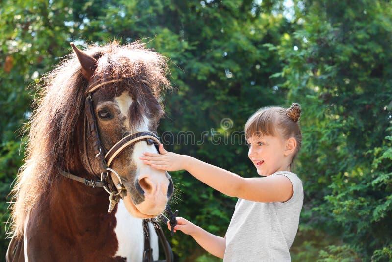 Menina bonito com seu pônei no verde imagem de stock royalty free