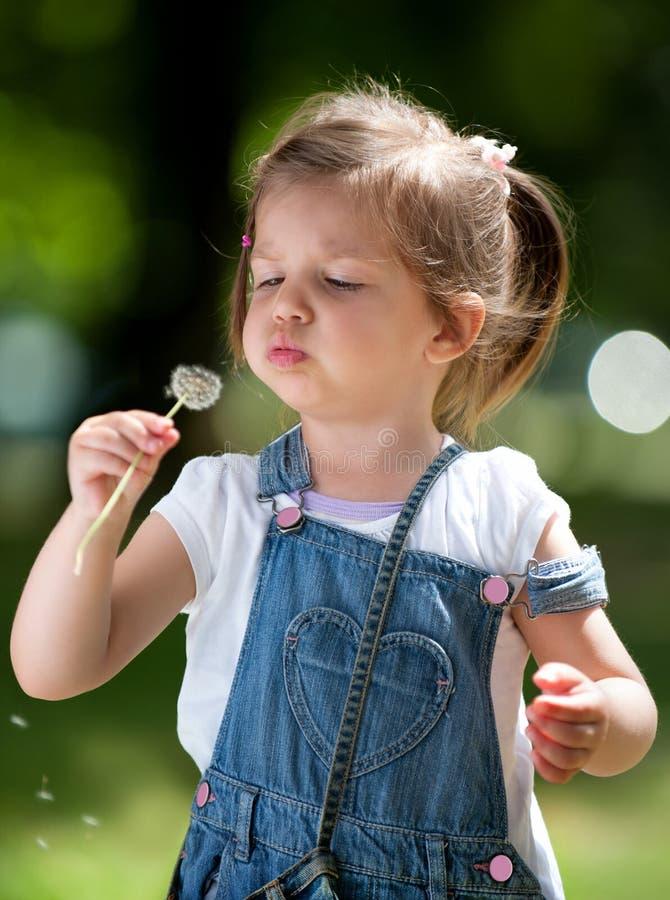Menina bonito com um dente-de-leão imagens de stock royalty free