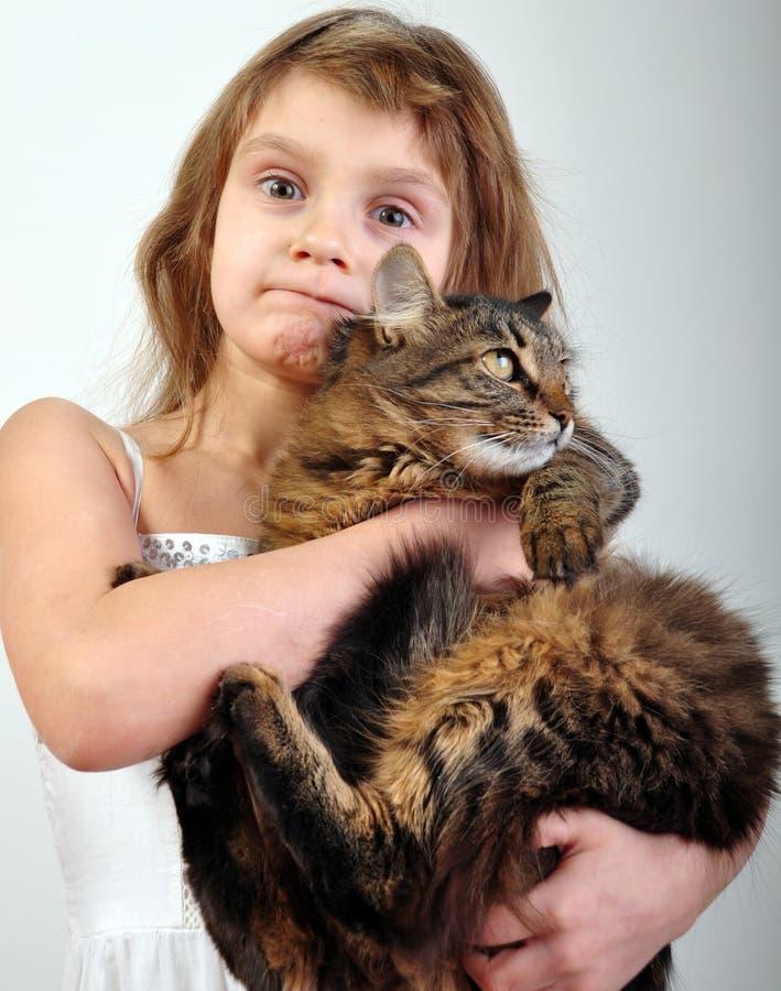 Menina bonito com um gato imagens de stock royalty free
