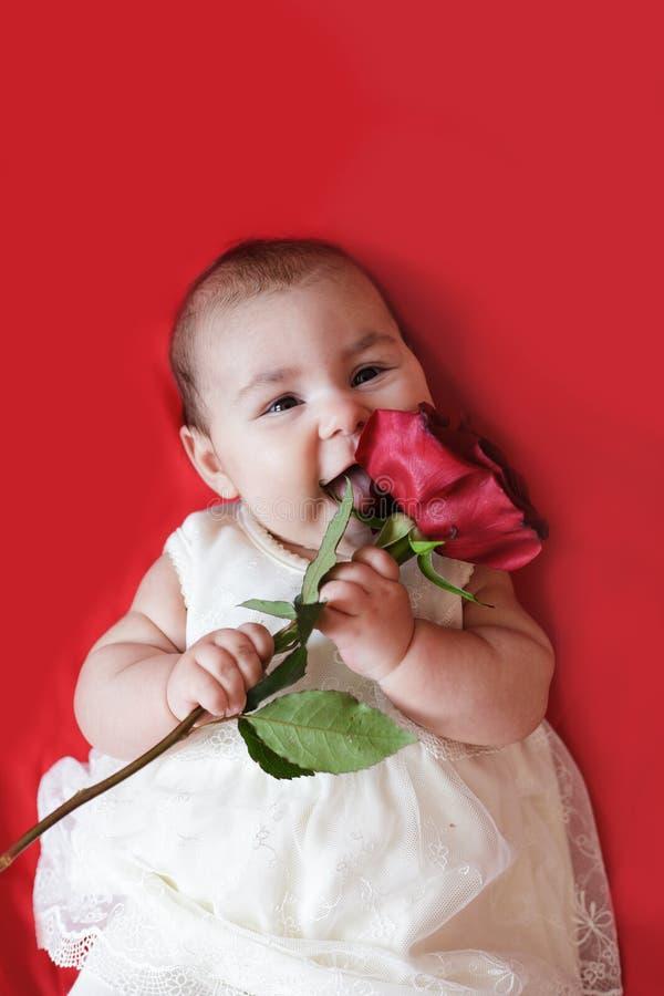 A menina bonito com vermelho levantou-se foto de stock