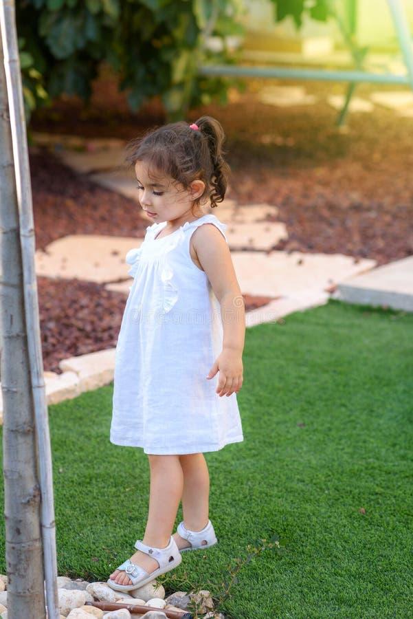 A menina bonito da criança de 3 anos na classe da natureza do parque, olhando, observa para os componentes da árvore fotografia de stock