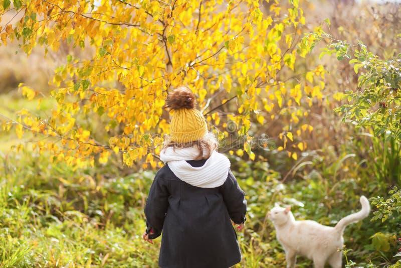 Menina bonito da criança que anda com gato fora, dia frio fotos de stock