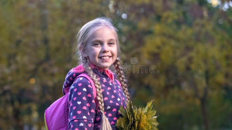 Menina bonito da escola com o ramalhete das folhas caídas que levantam para a câmera, caminhada do outono fotografia de stock