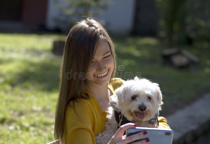 Menina bonito e levantamento branco do cão Fotos com telefone celular foto de stock