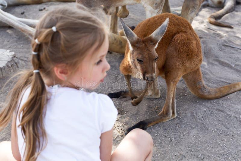 Menina bonito e um canguru em um jardim zool?gico australiano em Israel imagens de stock