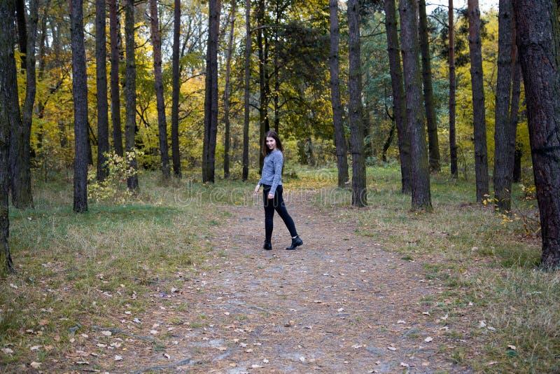 A menina bonito em uma camiseta cinzenta é metade de uma volta na estrada na área de espaço da cópia da floresta do outono imagens de stock royalty free