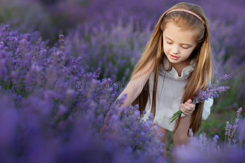 Menina bonito feliz no campo da alfazema que guarda o ramalhete de flores roxas imagem de stock