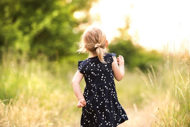 Menina bonito fora dentro na natureza ensolarada verde do verão imagem de stock royalty free