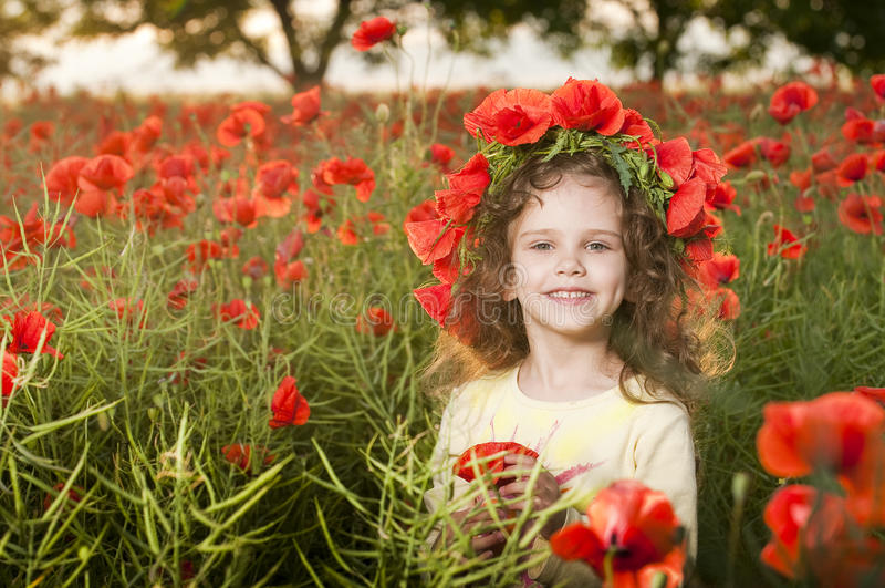 Menina bonito no campo da papoila fotografia de stock