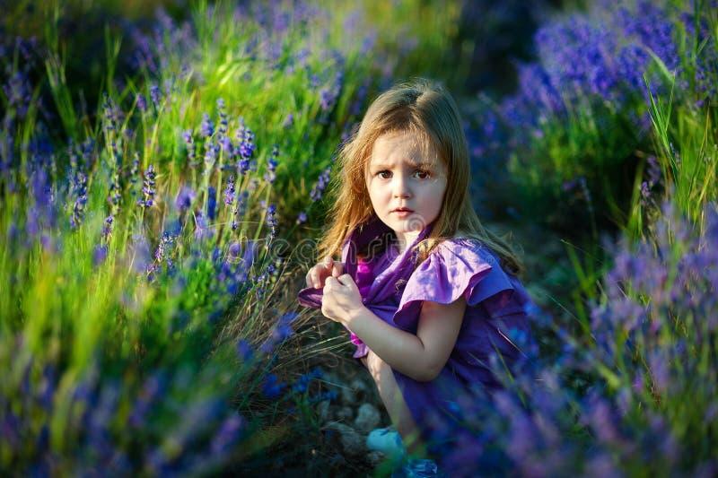 Menina bonito no prado no dia de verão imagens de stock