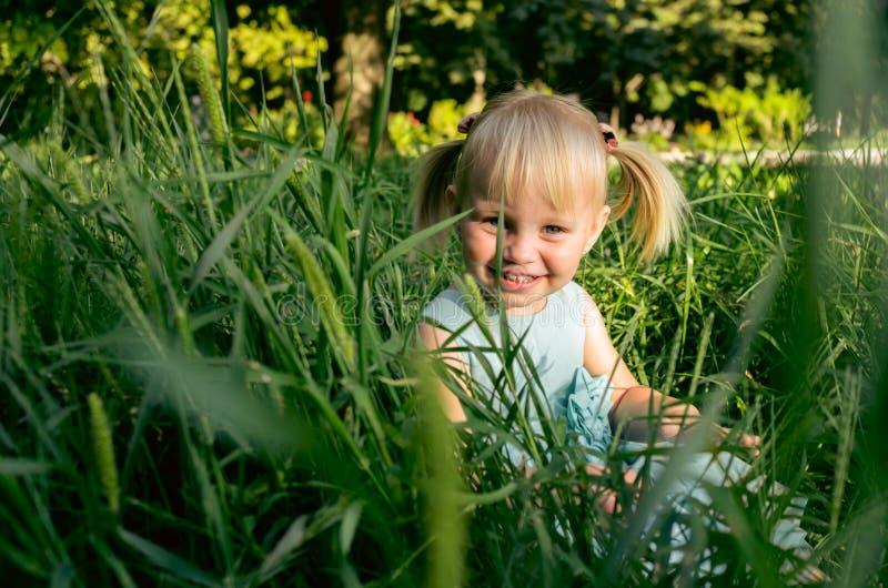 Menina bonito no prado no dia de verão imagem de stock royalty free