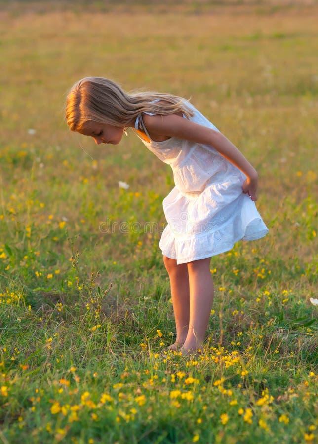 Menina bonito no vestido branco no prado fotografia de stock